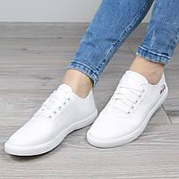 Слипоны кеды женские Lacoste белые, кеды женские осенняя обувь