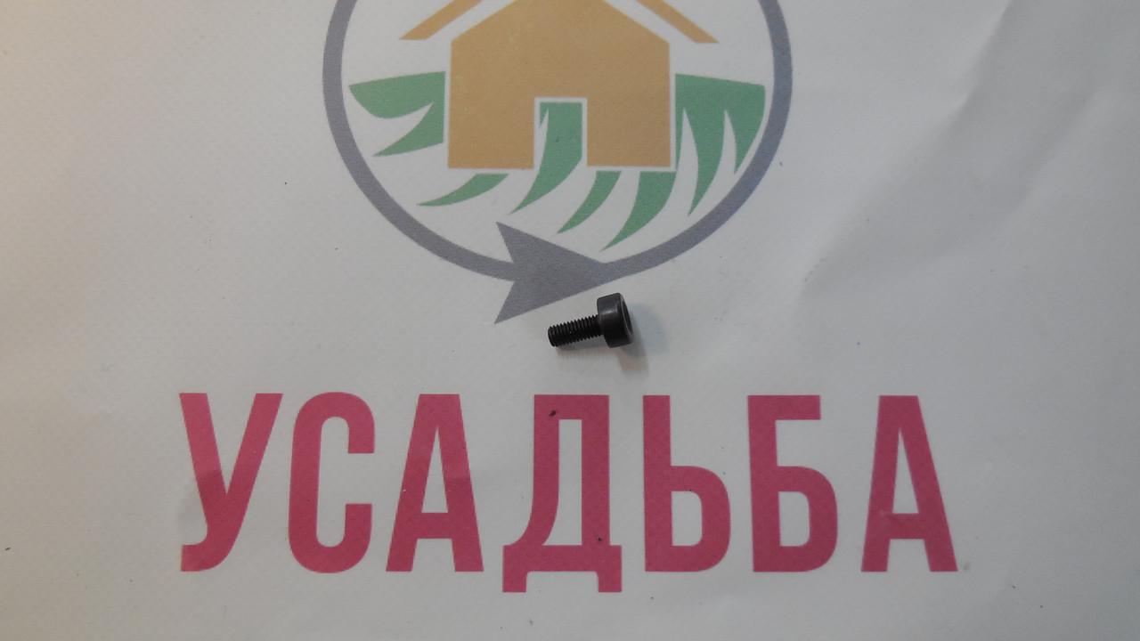 Болти кріплення на бензопилу Vitals,Sadko, Foresta, Дніпро, Кентавр, Forte, Бригадир