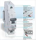 Автоматический выключатель Legrand RX3 1P 63A , фото 2