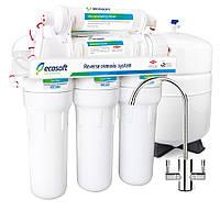 Фильтр обратного осмоса Ecosoft 6-75 для приготовления питьевой воды с минерализатором
