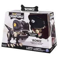 Интерактивный динозавр с косточкой Zoomer Chomplingz Interactive Dinosaur Bones
