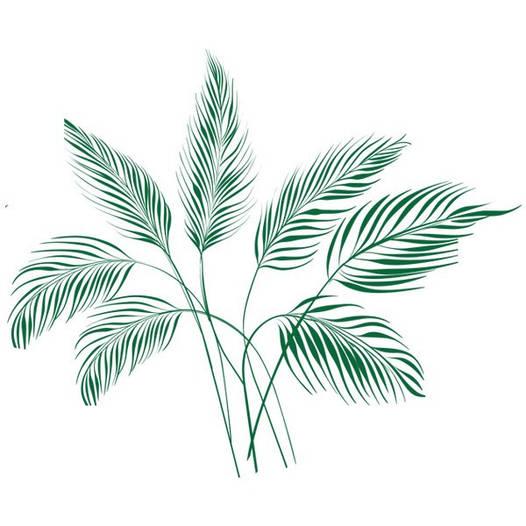 Наклейка интерьерная виниловая (120х100 см, варианты цветов) Palm Leaves