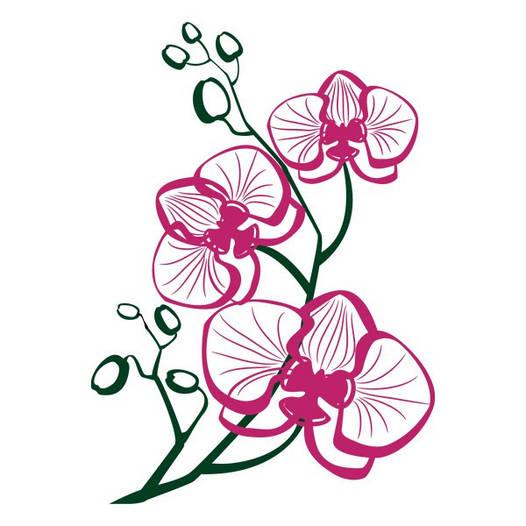 Наклейка интерьерная виниловая (50х70 см, варианты цветов) Orchid