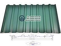 Профнастил ПК-20  0,35мм  RAL (цветной)
