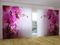 """Панорама Объемная 3D ФотоШтора """"Пурпурная орхидея"""""""