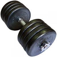 Гантель наборная 42 кг стальная крашеная на гайках OR