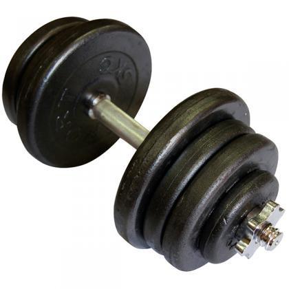 Гантель наборная 25,5 кг (TI-968-745-25-1)