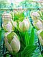 Двуспальный комплект постельного белья Белый Тюльпан, фото 3