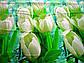 Двуспальный комплект постельного белья Белый Тюльпан, фото 4