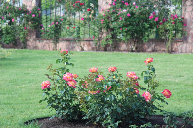 Шланги для полива огорода фото Тепловик