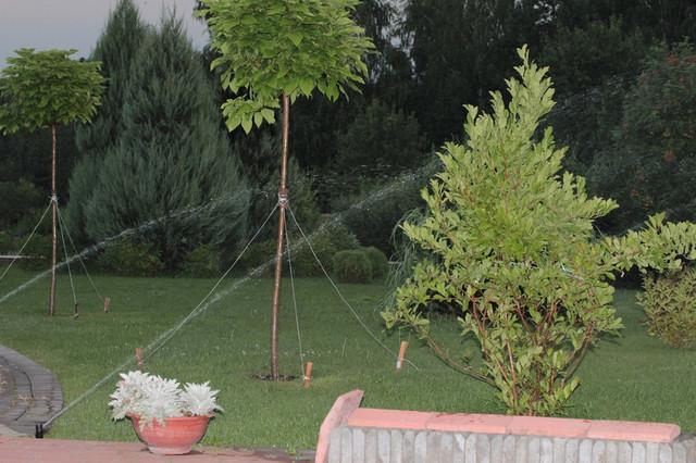 Автоматический полив фото Тепловик