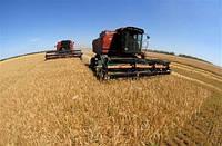 Харьковская область в 2016 году собрала один из лучших урожаев зерновых и зернобобовых
