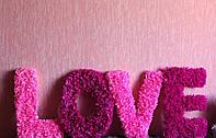 """Объемные буквы""""LOVE"""""""