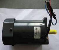 Squirrel Cage Blower Motor