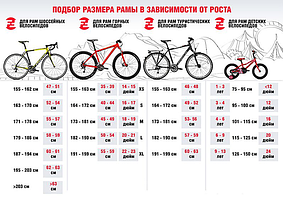 Как правильно выбрать велосипед. Медицинские советы.