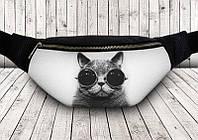 Сумка на пояс Кот черные очки