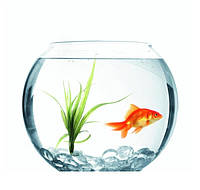 Аквариум шар (Круглый аквариум, ваза, свеча) 10 л.