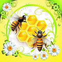Мед и медовая продукция