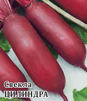 Cемена свеклы Цилиндра весовые для выращивания на хранения и продажу сладких плодов без белых колец на срезе