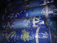 Сині  трави