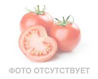 Семена томата индетерминантного Пино F1, 500 шт, Agri Saaten 500 шт.