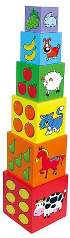 Развивающие и обучающие игрушки «Viga Toys» (59461) набор кубиков Пирамидка, фото 2