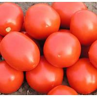 Семена томата детерминантного Ред Скай F1 Nunhems 5 000 шт