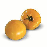 Семена томата индетерминантного KS 10 F1, от 100 шт, Kitano Seeds