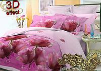 Семейный комплект постельного белья Sveline Tekstil PC7976 (поликоттон)