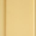 Панель ПВХ (Кіровоград) 10 см беж матова, 8мм