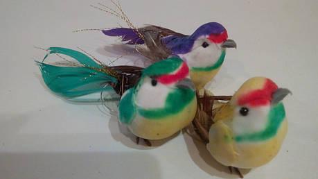Птичка декоративная, фото 2