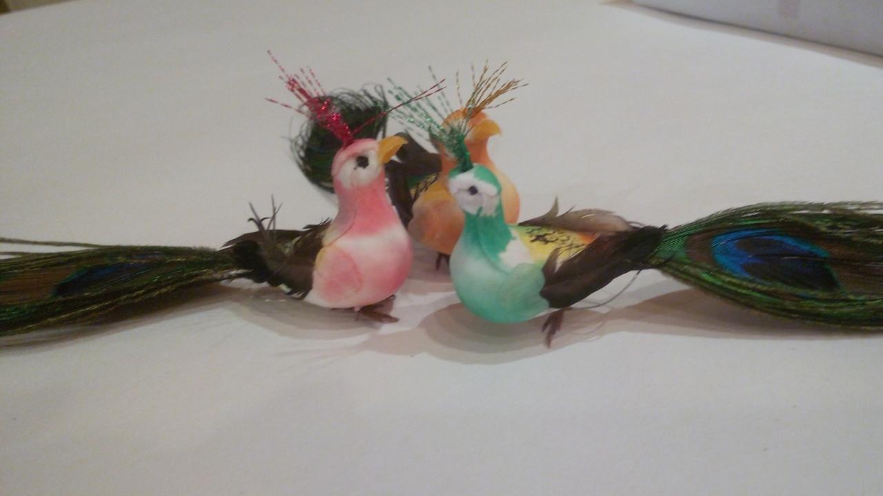 Декоративна пташка