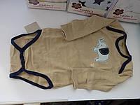 Комплект бодиков для малышей с длинным рукавом (5шт.)