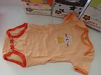 Комплект бодиков для малышей с коротким рукавом (5шт.)