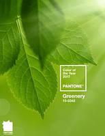 Главный цвет наступающего 2017 года объявлен светло-зеленый оттенок