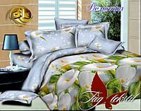 Комплект постельного белья Деметра 2 - спальный
