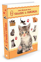 Моя большая книга о кошках и котятах Энциклопедия для детей. Издательство Махаон (Machon)