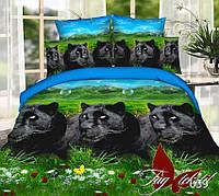 Комплект постельного белья BP039 2 - спальный