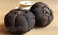 Чай Пуэр Грейпфрут, фото 2