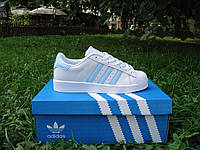 Супер стильные женские кроссовки Adidas Super star. (адидас супер стар) белые с синими полосками