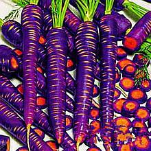 """Семена """"Морковь Фиолетовая"""" (смесь сортов)"""