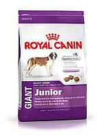 Royal Canin (Роял Канин) Giant Junior корм для щенков гигантских пород  15 кг.