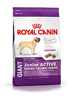 Royal Canin (Роял Канин) Giant Junior Active корм для щенков с высокими энергетическими потребностями  15 кг.