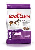 Royal Canin (Роял Канин) Giant Adult корм для собак гигантских пород старше 18 месяцев  4 кг.