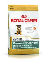 Royal Canin (Роял Канин) German Shepherd Junior корм для щенков немецкой овчарки 1 кг.