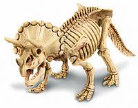 Археологические раскопки Трицератопс
