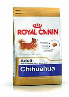 Royal Canin (Роял Канин) Chihuahua корм для собак породы чихуахуа старше 8 месяцев 1.5 кг.