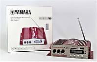 Усилитель звука AMP 100, различные сферы деятельности для усиления мощности звука, караоке на 2 микрофона