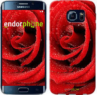 "Чехол на Samsung Galaxy S6 Edge G925F Красная роза ""529c-83"""