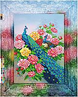 """Схема для вышивки бисером на подрамнике (холст) """"Павлин и розы"""""""